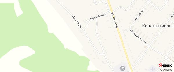 Лесная улица на карте деревни Константиновки с номерами домов