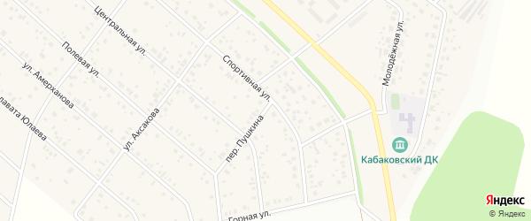 Переулок Пушкина на карте деревни Кабаково с номерами домов