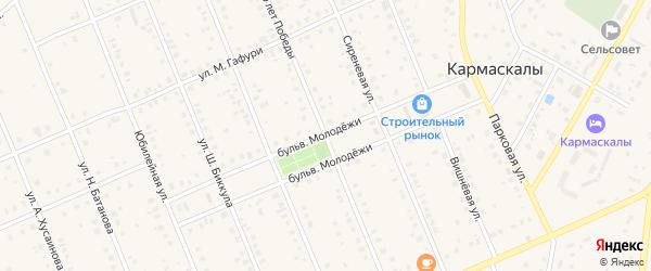 Улица 50 лет Победы на карте села Кармаскалы с номерами домов