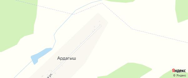 Центральная улица на карте деревни Ардагыша с номерами домов
