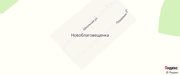 Прудовая улица на карте деревни Новоблаговещенки с номерами домов