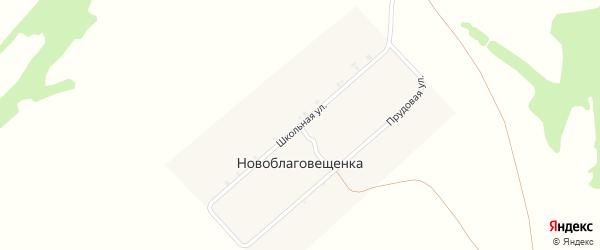 Школьная улица на карте деревни Новоблаговещенки с номерами домов