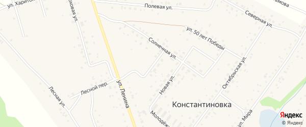 Российская улица на карте деревни Константиновки с номерами домов