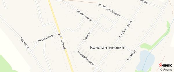 Новая улица на карте деревни Константиновки с номерами домов