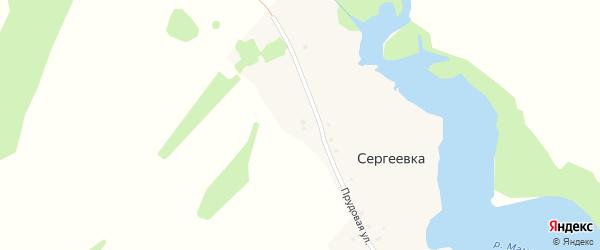 Прудовая улица на карте деревни Сергеевки с номерами домов