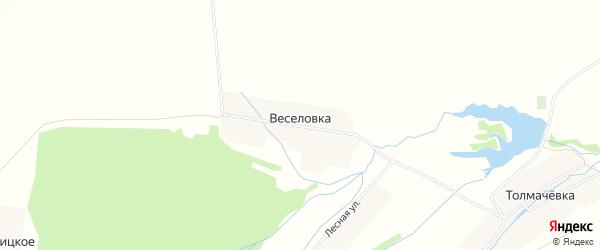 Карта деревни Веселовка в Башкортостане с улицами и номерами домов