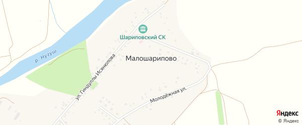 Молодежная улица на карте деревни Малошарипово с номерами домов