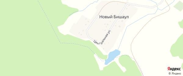 Центральная улица на карте деревни Нового Бишаула с номерами домов