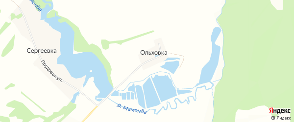 Карта деревни Ольховки в Башкортостане с улицами и номерами домов