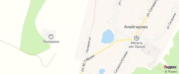 Полевая улица на карте деревни Алайгирово с номерами домов