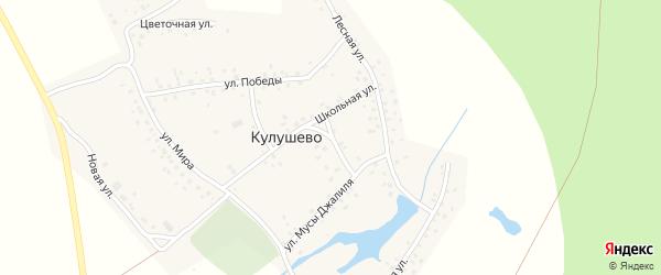 Г.Тукая улица на карте деревни Кулушево с номерами домов