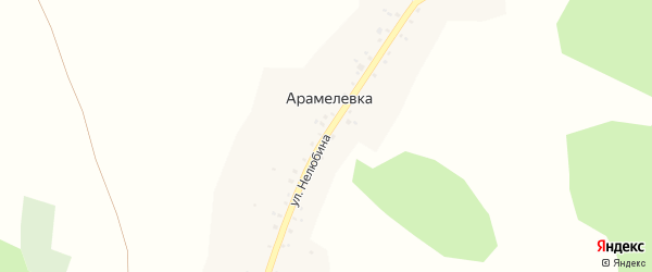Улица Нелюбина на карте деревни Арамелевки с номерами домов