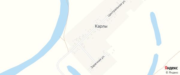 Заречная улица на карте деревни Карлы с номерами домов