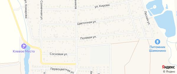 Полевая улица на карте деревни Шмидтово с номерами домов