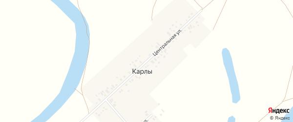 Центральная улица на карте деревни Карлы с номерами домов