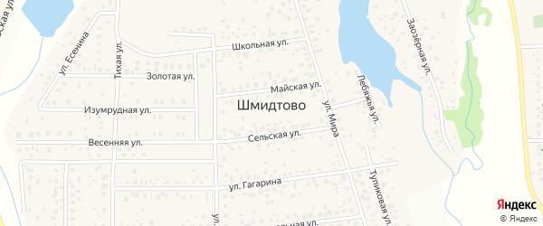 Заозерная улица на карте деревни Шмидтово с номерами домов