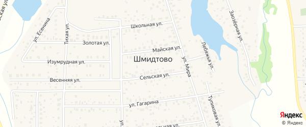 Озерная улица на карте деревни Шмидтово с номерами домов