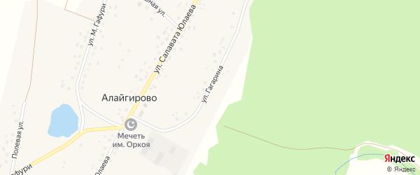 Улица Гагарина на карте деревни Алайгирово с номерами домов