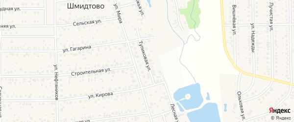 Тупиковая улица на карте деревни Шмидтово с номерами домов