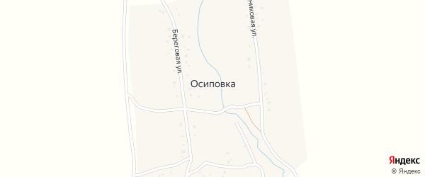 Береговая улица на карте деревни Осиповки с номерами домов