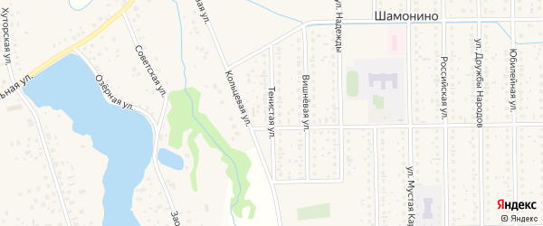 Тенистая улица на карте деревни Шамонино с номерами домов