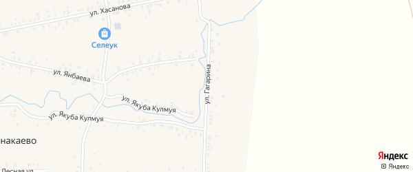 Улица Гагарина на карте деревни Канакаево с номерами домов