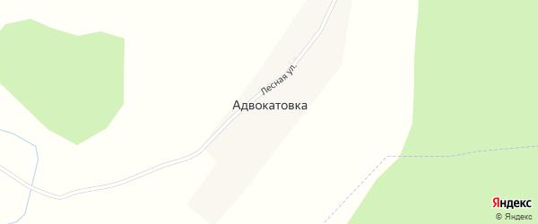 Лесная улица на карте деревни Адвокатовки с номерами домов