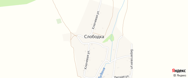 Береговая улица на карте хутора Слободки с номерами домов