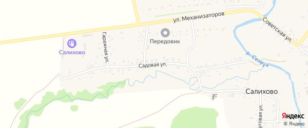 Садовая улица на карте села Салихово с номерами домов