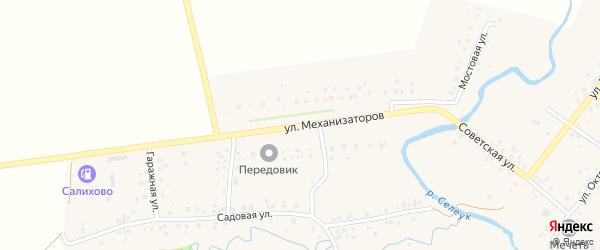 Улица Механизаторов на карте села Салихово с номерами домов