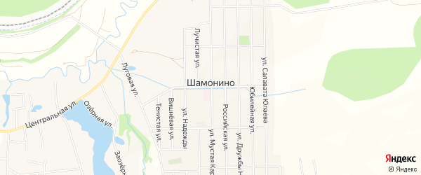 Карта деревни Шамонино в Башкортостане с улицами и номерами домов