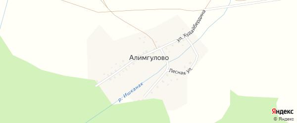 Лесная улица на карте деревни Алимгулово с номерами домов