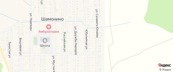 Юбилейная улица на карте деревни Шамонино с номерами домов
