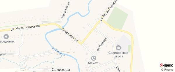 Улица Мусы Гареева на карте села Салихово с номерами домов