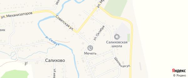Улица Октября на карте села Салихово с номерами домов