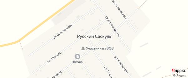Центральная улица на карте деревни Русского Саскуля с номерами домов
