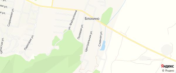 Карта деревни Блохино в Башкортостане с улицами и номерами домов