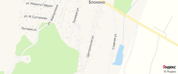 Центральная улица на карте деревни Блохино с номерами домов