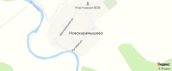 Береговая улица на карте деревни Новокарамышево с номерами домов