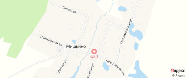 Комсомольская улица на карте деревни Мишкино с номерами домов