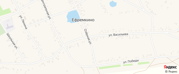 Улица Васильева на карте села Ефремкино с номерами домов