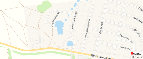 Центральная улица на карте деревни Дорогино с номерами домов