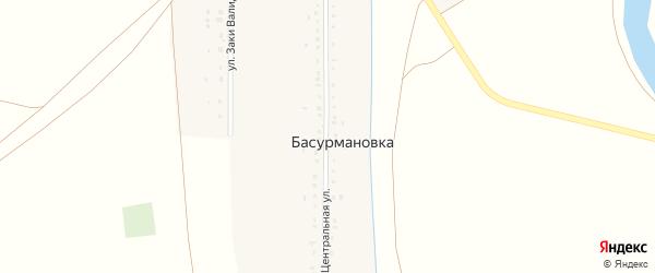Центральная улица на карте деревни Басурмановки с номерами домов