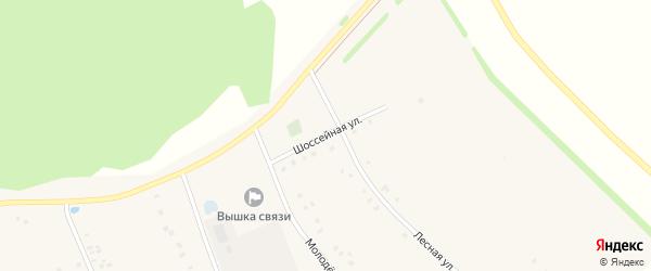 Шоссейная улица на карте села Ефремкино с номерами домов