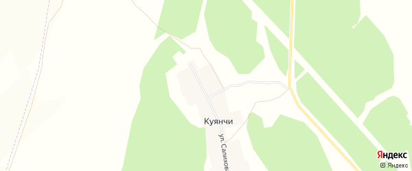 Карта деревни Куянчи в Башкортостане с улицами и номерами домов