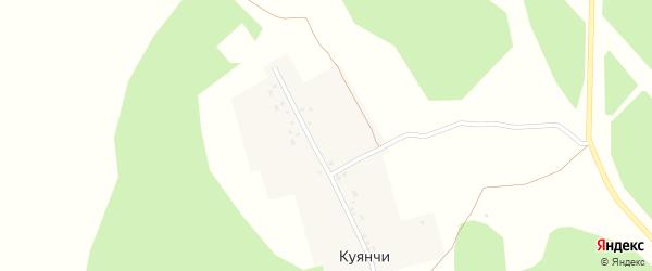 Улица Салихова Абзала на карте деревни Куянчи с номерами домов