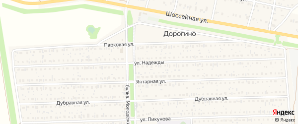 Улица Надежды на карте деревни Дорогино с номерами домов