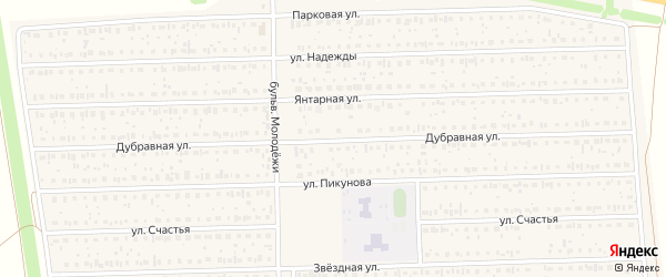 Дубравная улица на карте деревни Дорогино с номерами домов