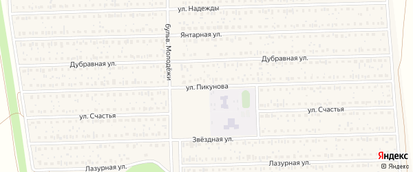 Улица Пикунова на карте деревни Дорогино с номерами домов