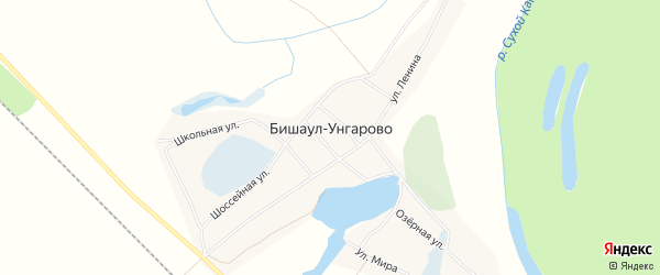 Карта деревни Бишаул-Унгарово в Башкортостане с улицами и номерами домов